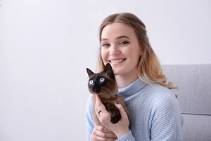 How to Bond With Your Siamese Cat